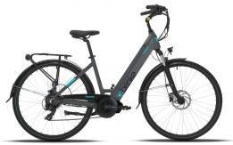 Furto bici elettrica Brinke, Florence