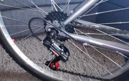 Proprietaria in possesso della bici