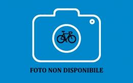 Ricerca bicicletta rubata